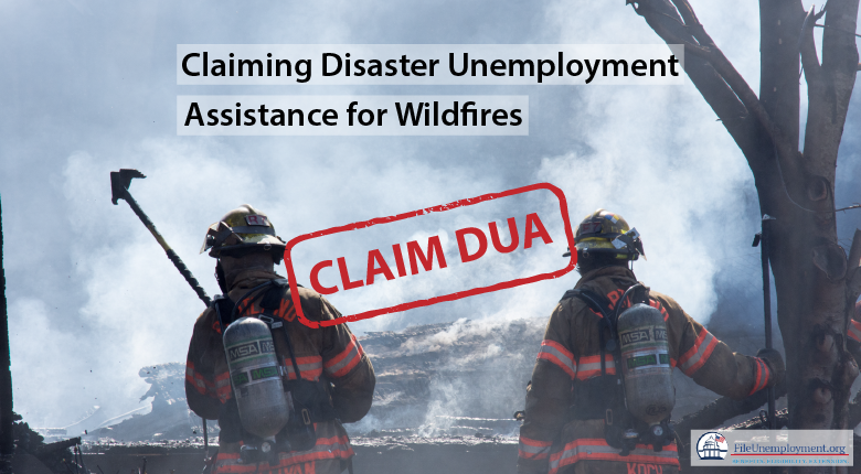 How to claim DUA for the California Wildfires