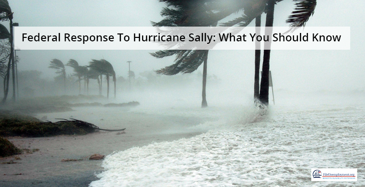 Federal Response To Hurricane Sally: Know Them All